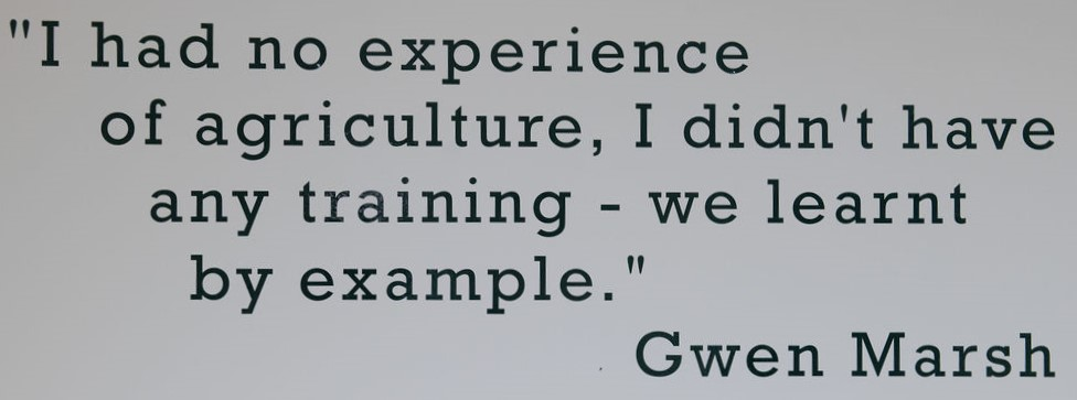 Quote from land girl, Gwen Marsh, featured in the Women's Land Army exhibition at the Yorkshire Museum of Farming.